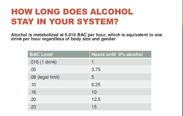 How long does alcohol stay in system